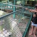 subic trip-20130725-38-zoobic safari.jpg