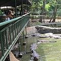 subic trip-20130725-41-zoobic safari.jpg