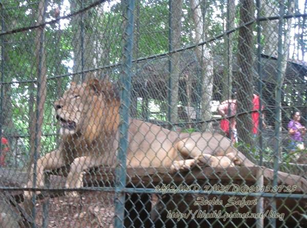 subic trip-20130725-49-zoobic safari.jpg