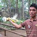 subic trip-20130725-51-zoobic safari.jpg