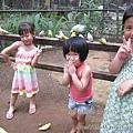subic trip-20130725-57-zoobic safari.jpg