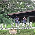 subic trip-20130725-62-zoobic safari.jpg