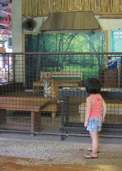 subic trip-20130725-64-zoobic safari.jpg