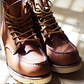 red wing 875-1