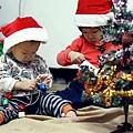 聖誕樹-11.jpg