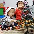 聖誕樹-14.jpg