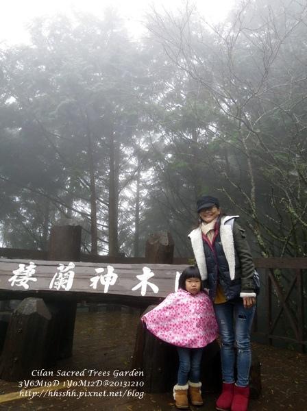 20131210-棲蘭神木園-15.jpg