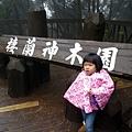 20131210-棲蘭神木園-17.jpg