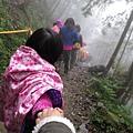 20131210-棲蘭神木園-21.jpg