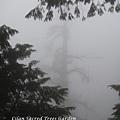20131210-棲蘭神木園-27.jpg