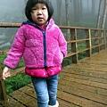20131210-棲蘭神木園-35.jpg