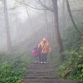 20131210-棲蘭神木園-45.jpg