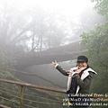 20131210-棲蘭神木園-48.jpg