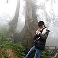 20131210-棲蘭神木園-49.jpg