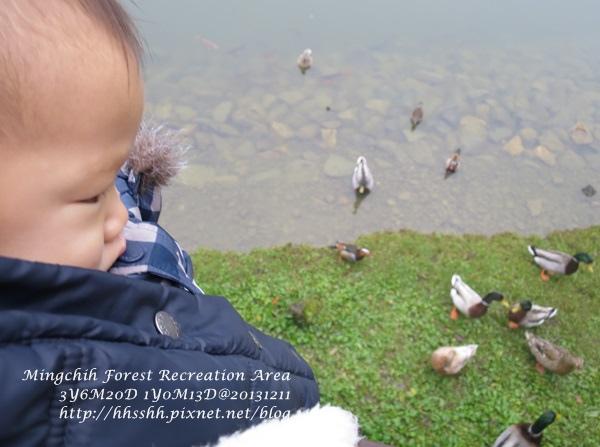 20131211-明池山莊-30