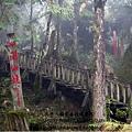 20131211-太平山-10.jpg