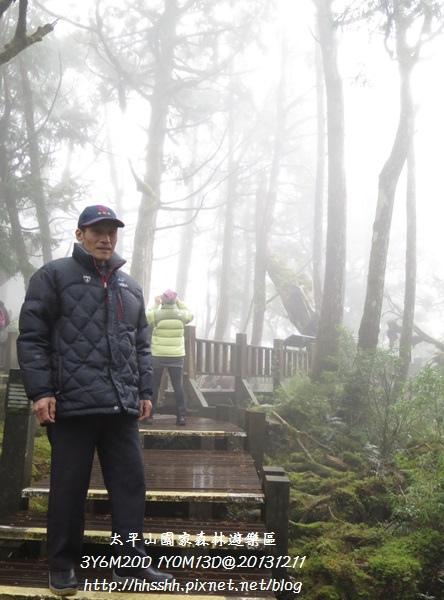 20131211-太平山-11.jpg
