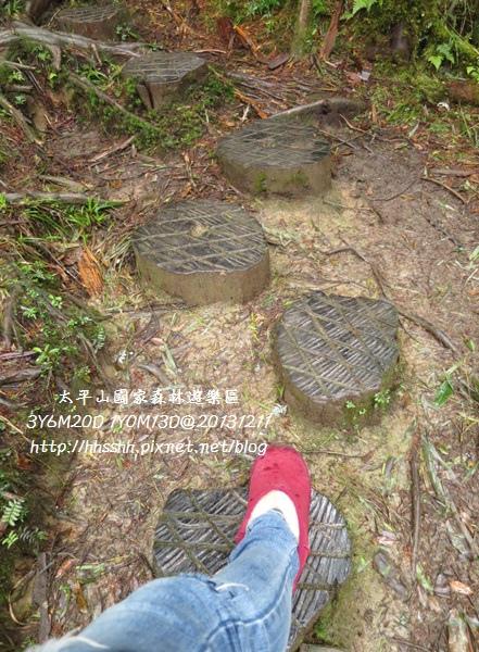 20131211-太平山-20.jpg