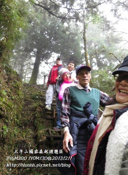 20131211-太平山-23.jpg