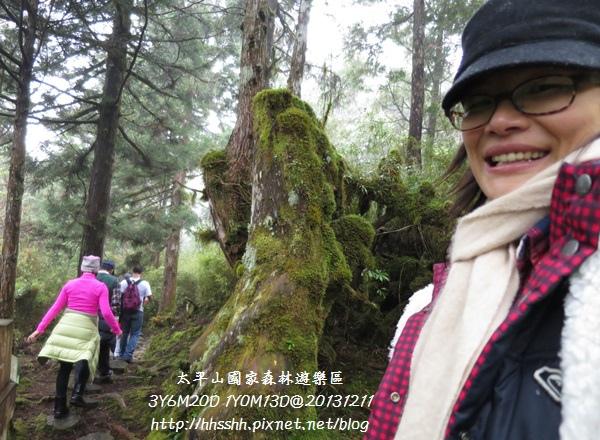 20131211-太平山-27.jpg