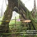 20131211-太平山-30.jpg