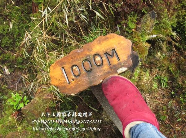 20131211-太平山-32.jpg