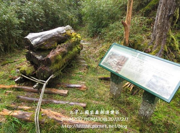 20131211-太平山-35.jpg
