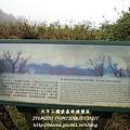 20131211-太平山-37.jpg