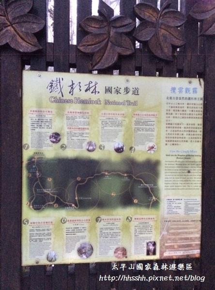 20131211-太平山-45.jpg