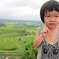 D7-38-Jatiluwih rice terrace.jpg