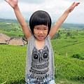 D7-39-Jatiluwih rice terrace.jpg