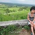 D7-42-Jatiluwih rice terrace.jpg