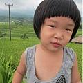 D7-41-Jatiluwih rice terrace.jpg