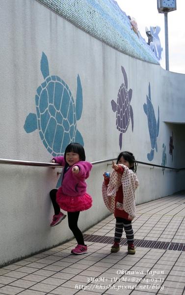 2014沖繩0311-48.jpg