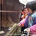 小綠豆學校生活-18.jpg
