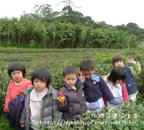 小綠豆學校生活-43.jpg