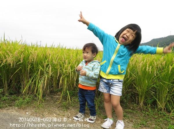 日本嵐山-20140919-8.jpg