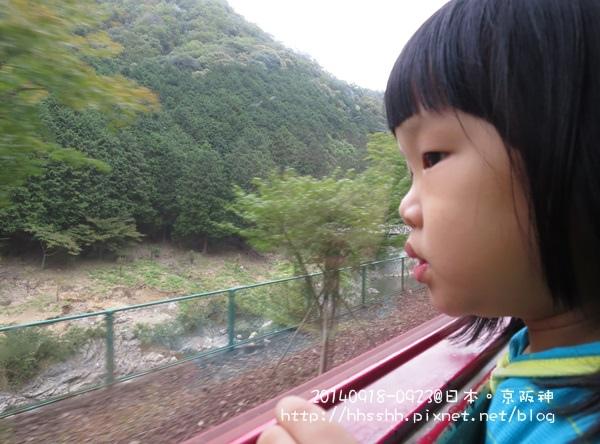 日本嵐山-20140919-21.jpg