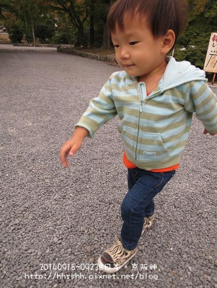 日本嵐山-20140919-70.jpg