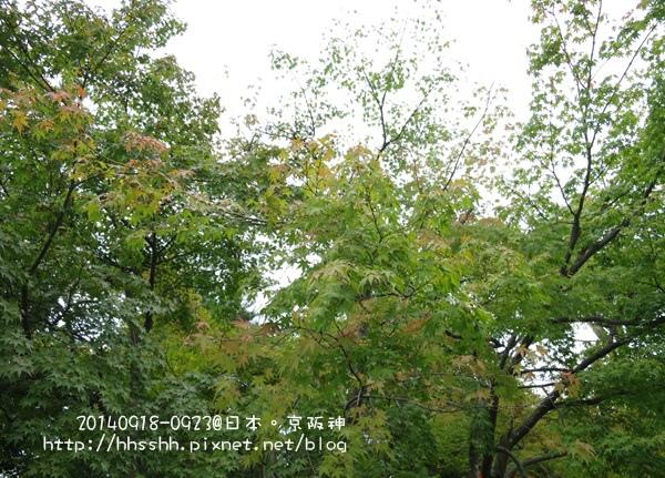 日本嵐山-20140919-69.jpg