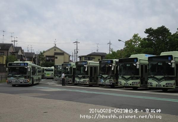 20140919-87.jpg