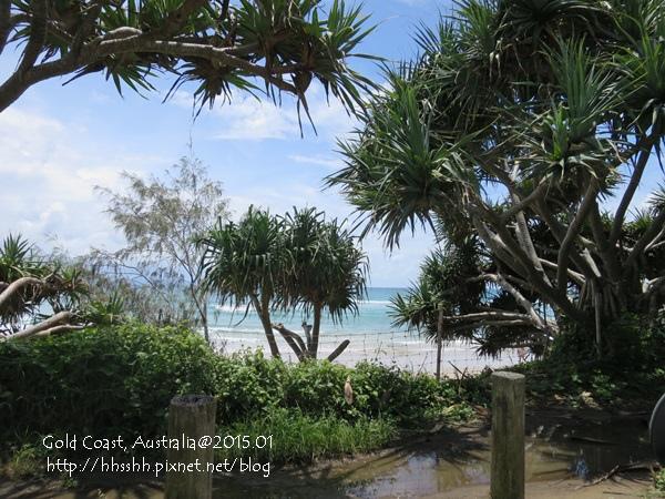 20150121-黃金海岸-Byron bay-3.jpg