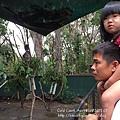 20150122-黃金海岸-currumbin wildlife sanctuary-9.jpg