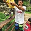 20150122-黃金海岸-currumbin wildlife sanctuary-26.jpg