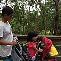 20150122-黃金海岸-currumbin wildlife sanctuary-28.jpg