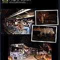 20150720-61-night safari