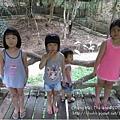 20150723-6-chiang mai zoo.jpg