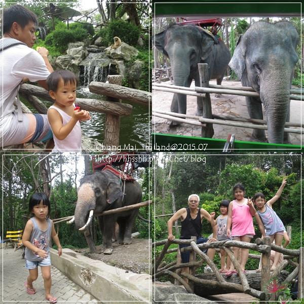 20150723-11-chiang mai zoo.jpg