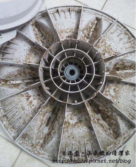 大洗堂洗衣機清潔家-3.jpg