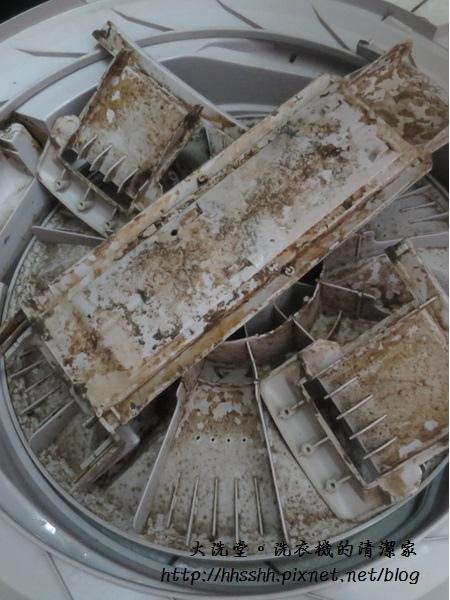 大洗堂洗衣機清潔家-4.jpg